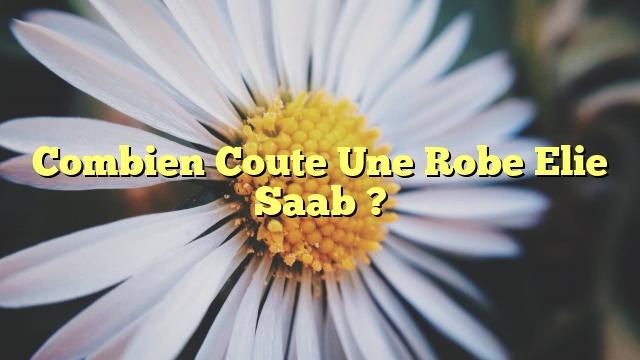 Combien Coute Une Robe Elie Saab ?